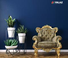 Interior Paint Plus+
